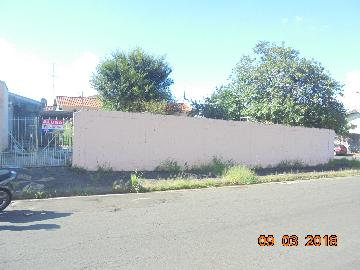 Nova Odessa Jardim Bela Vista Terreno Locacao R$ 600,00  Area do terreno 300.00m2